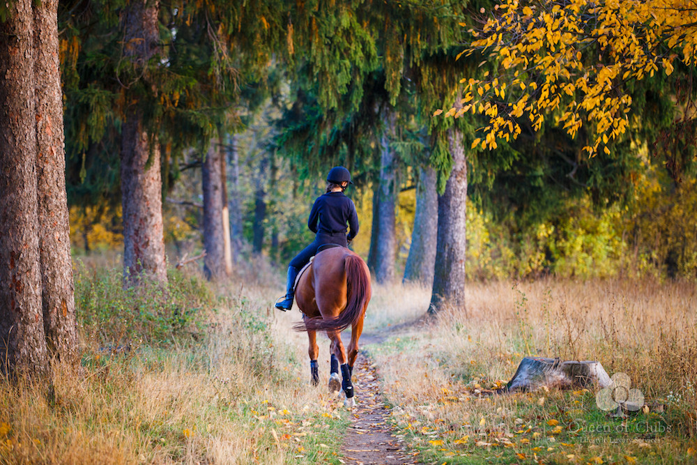 HORSE RIDING IN HIDE PARK.jpg